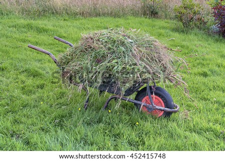 Garden wheel barrow on long grass heaped full of weeds.  Gardening weeding maintenance - stock photo