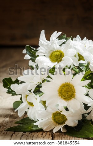 Garden white daisies on an old wooden background, selective focus