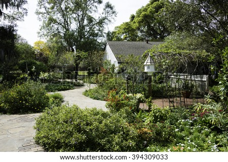 Garden with flowers and plants in Florida.