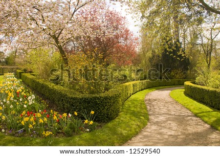 Garden with trees and flowers in blossom