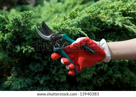 Garden working - stock photo
