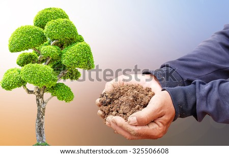 Gardener,adult hands holding soil,Hand dirty with soil. The growth of the trees make a fertile environment. Business growth and success. Gardeners are planting trees. Tree planting The compost.