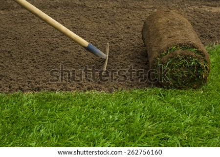 Gardener applying turf rolls in the backyard - stock photo