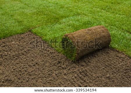 Gardener applying turf rolls in the backyard - stock photo