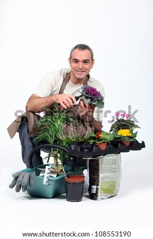 Gardener knelt by plants - stock photo