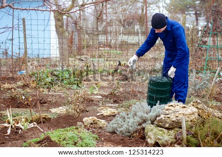 Gardener unwrapping green metallic wire mesh to protect plants