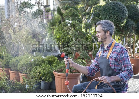 gardener watering potted trees in a garden center - stock photo