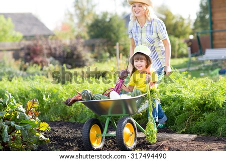 Gardener woman pushing wheelbarrow with kid and vegetables at sunny day - stock photo