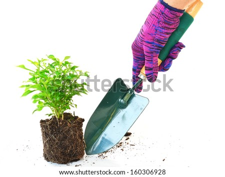 Gardeners hand in work glove with spade  - stock photo