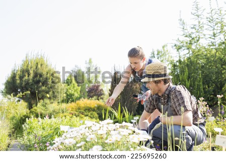 Gardeners working at plant nursery - stock photo