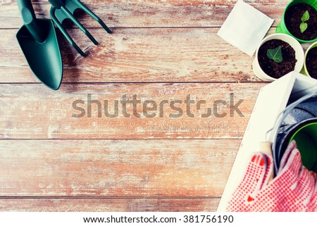 gardening and planting concept - close up of seedlings, garden tools and seeds on table - stock photo