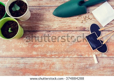 gardening and planting concept - close up of seedlings, garden trowel, seeds and nameplates on table - stock photo