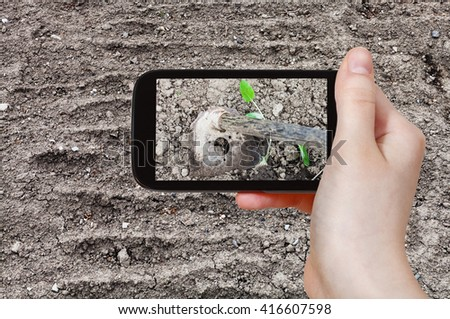 gardening concept - farmer photographs the loosening of garden ground by hoe in spring on tablet pc - stock photo
