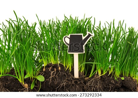 Gardening concept: grass, soil, board for text isolated on white background - stock photo