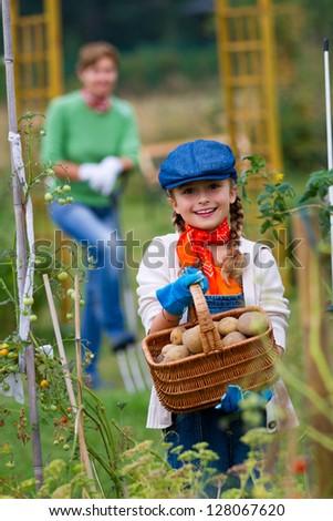 Gardening, gardener, child - lovely girl working in vegetable garden - stock photo