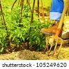 Gardening, gardener's boots over rake, man working hard on the field, digging soil and growing fresh vegetables, healthy organic food, tomato plant, taking care of farm land, harvest season - stock photo