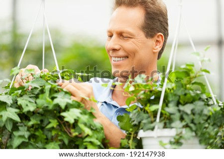 Gardening. Handsome mature man working in a garden and smiling - stock photo