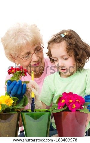 Gardening, planting - grandmother with granddaughter planting flowers into the flowerpots, isolated over white - stock photo