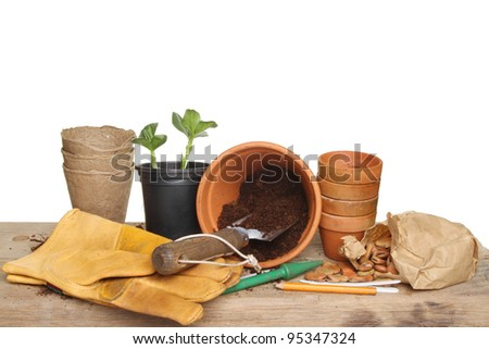 Gardening themed still life, garden tools, seedling plant, pots, compost and seeds on a wooden potting bench - stock photo