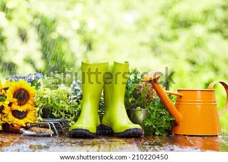 Gardening tool in rain - stock photo