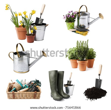 Gardening tools and flowers isolated on white