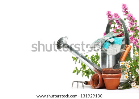 Gardening tools and flowers isolated on white with copy space - stock photo
