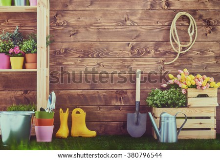 Gardening tools and on the grass in the backyard. Fresh flowers and plants in the spring. - stock photo