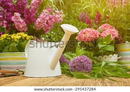 Gardening tools and planting  flower - stock photo