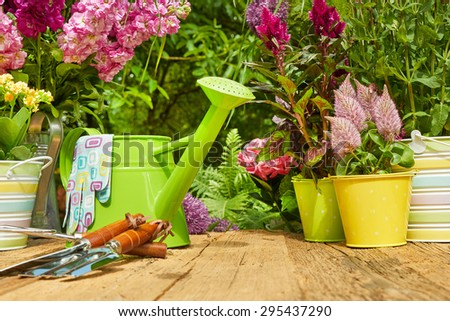 Gardening tools and planting  flower