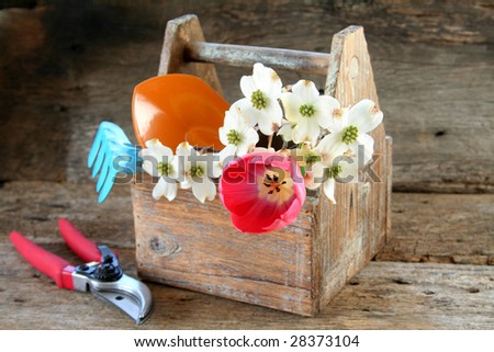 Gardening tools and tool box with fresh tulip and dogwood blooms. - stock photo