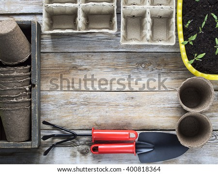 Gardening tools, cardboard pots and seedlings in flowerpot - stock photo