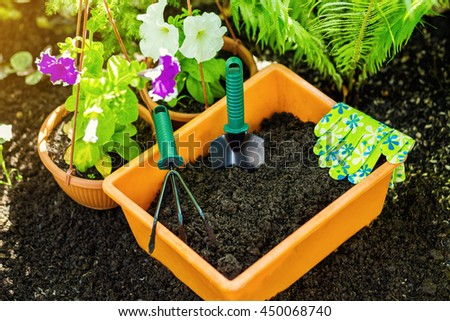 Gardening tools in the garden. Gardeners hand planting flowers. Close up of hands. Woman florist working in her greenhouse. Working in the garden. Work gloves, garden tools, flowers, black earth.  - stock photo