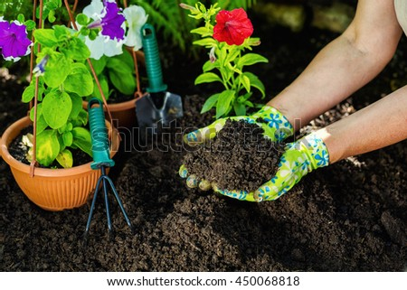 Gardening tools in the garden. Gardeners hand planting flowers. Close up of hands. Woman florist working in her greenhouse. Working in the garden. Work gloves, garden tools, flowers, black earth.
