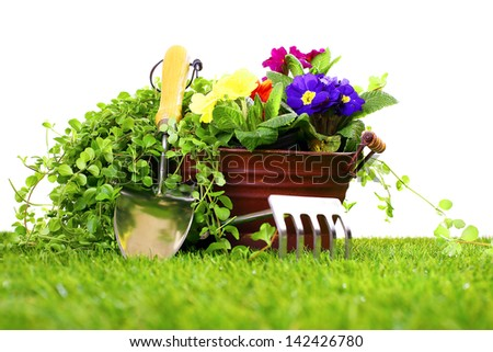 Gardening tools like a cultivator, trowel and a metal flower vase with pansies on a green lawn and white background