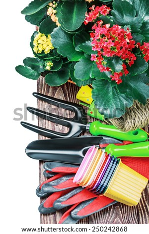 Gardening tools on a white background isolated. Focus in the middle of the frame - stock photo