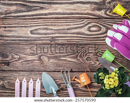Gardening tools on a wooden table. Focus on the table - stock photo