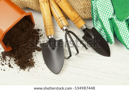 Gardening tools on old white table
