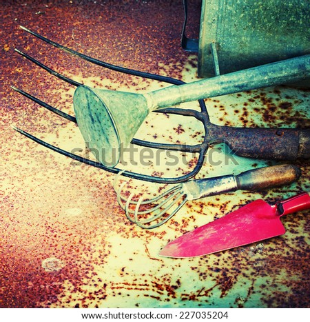 Gardening tools on rustic background - stock photo
