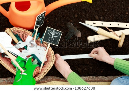 Gardening - woman sowing radish seeds into the soil - stock photo