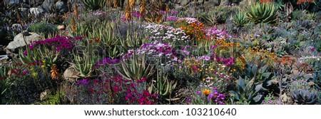 Gardens in Spring, Ojai Center for Earth Concerns, Ojai, California - stock photo