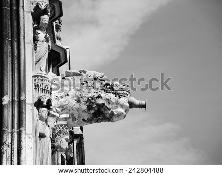Gargoyle downspout. Architectural detail of  the cathedral in Chartres (France). Aged photo. Black and white. - stock photo