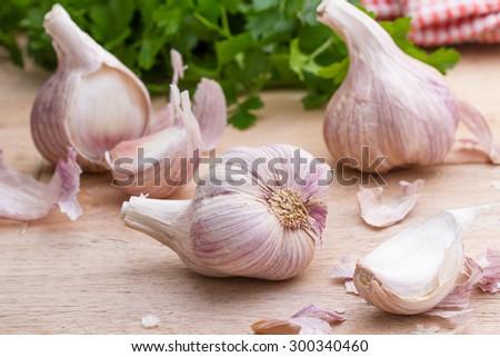 garlic bulb   - stock photo