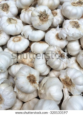 Garlic bulbs as a food background