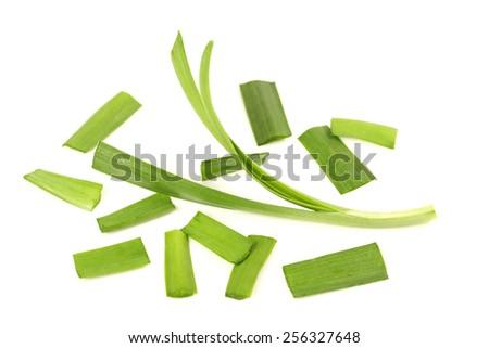 Garlic chives isolated on white background  - stock photo
