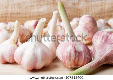 Garlic close up - stock photo
