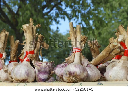 Garlic cloves at a farmers market in France, Europe