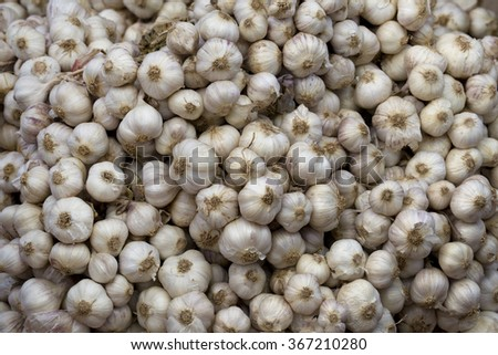 Garlic , Fresh garlic isolated , Garlic group - stock photo