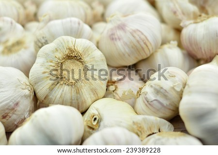 Garlic in a supermarket