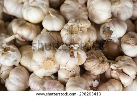 Garlic on the basket