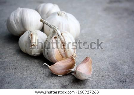 Garlic on the gray background - stock photo